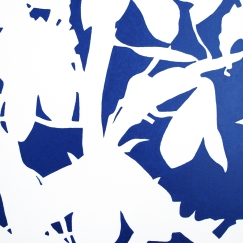 Victoria Blue (2007) [40x40]